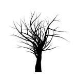 Conception nue d'icône de symbole de vecteur de silhouette de branche d'arbre Belle illustration d'isolement sur le fond blanc illustration libre de droits