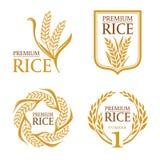 Conception organique de la meilleure qualité brune orange de vecteur de logo de bannière de produit naturel de riz non-décortiqué Image stock
