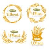 Conception organique de vecteur de signe de bannière de nourriture de produits de grain de riz de Paddy Wheat Photographie stock