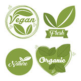 conception organique et naturelle illustration stock