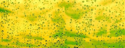Conception panoramique de gouttes de pluie Images stock