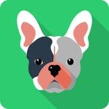 Conception plate d'icône de chien de vecteur Photos libres de droits