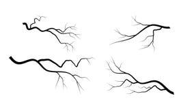 Conception réglée d'icône de symbole de vecteur de branche nue illustration de vecteur