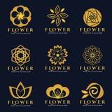 Conception réglée d'art de vecteur de logo de fleur d'or Photo stock
