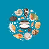 Conception ronde de bannière de coquilles de mer de bande dessinée illustration stock