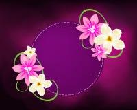Conception ronde de fleurs de vue Image stock