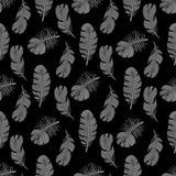 Conception sans couture élégante de modèle de plumes d'oiseau illustration stock