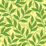 Conception sensible de la mosaïque tendre de branches et de feuilles des feuilles de différentes nuances de vert Dirigez la confi illustration de vecteur