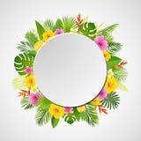 Conception tropicale d'été avec des palmettes, des plantes tropicales, des fleurs et l'ananas Illustration de vecteur Image stock