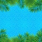 Conception tropicale de paysage marin Usines exotiques, texture de mer, endroit pour le texte Cadre carré de frontière Illustrati illustration stock