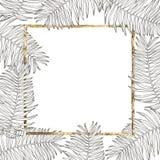 Conception tropicale de vecteur de feuilles d'été Fond floral abstrait Invitation ou design de carte avec des feuilles de jungle Photos stock