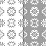 Conceptions florales blanches et grises d'ornamental Ensemble de configurations sans joint Photo stock