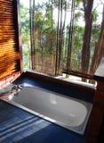 Concepto abierto del cuarto de baño con la opinión escénica de la montaña foto de archivo