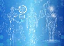 Concepto abstracto de la tecnología del fondo en la luz azul, cuerpo humano Imagen de archivo