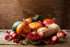 Concepto abundante de la cosecha con las calabazas, las manzanas, las bayas y caída Imagen de archivo libre de regalías