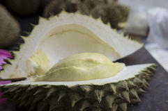 Concepto agudo de rey Thai Asian de la fruta de la espina de la cáscara del Durian Foto de archivo