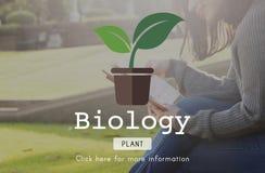 Concepto ambiental de la naturaleza de la protección de la ciencia de la biología Imágenes de archivo libres de regalías