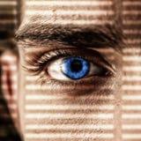 Concepto atento de la mirada Fotografía de archivo