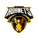 Concepto atlético del logotipo del vector del club de la cabeza furiosa del avispón aislado en el fondo blanco Fotos de archivo