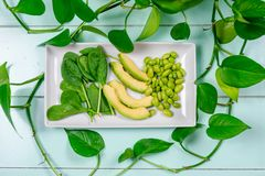 Concepto basado planta de la dieta - verdes sanos foto de archivo libre de regalías