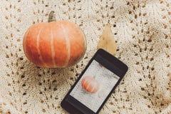 Concepto blogging de Instagram teléfono con la foto de la calabaza y de la hoja Fotografía de archivo
