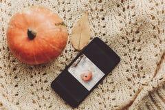 Concepto blogging de Instagram teléfono con la foto de la calabaza y de la hoja Foto de archivo libre de regalías