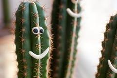 Concepto - cactus en una maceta con sonrisas divertidas, compañía alegre, buen humor Imagen de archivo libre de regalías