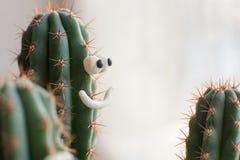 Concepto - cactus en una maceta con sonrisas divertidas, compañía alegre, buen humor Foto de archivo
