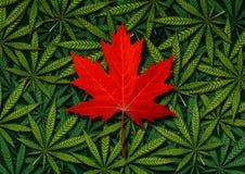 Concepto canadiense de la marijuana Ilustración del Vector