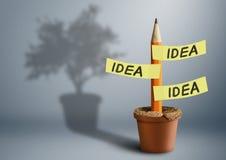 Concepto creativo de la idea, lápiz con las etiquetas engomadas y sombra del árbol Foto de archivo libre de regalías