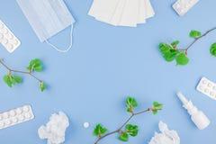 Concepto de alergia estacional de la primavera imagen de archivo libre de regalías