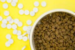 Concepto de alimentación del animal doméstico foto de archivo