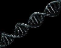 Concepto de bioquímica con la molécula de la DNA en fondo negro libre illustration