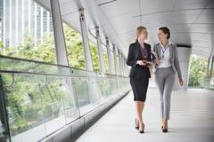 Concepto de Corporate Colleagues Talking de la empresaria Foto de archivo