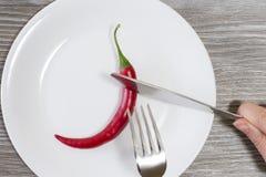Concepto de dieta estricta Ciérrese encima de la foto de las manos del ` s de la mujer que cortan la pimienta de chile en una que imagen de archivo