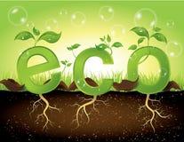Concepto de Eco Fotos de archivo