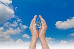 Concepto de Eco: Gota y árbol del agua del asimiento de la mano Imagen de archivo