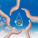 Concepto de Eco: Gota y árbol del agua del asimiento de la mano Foto de archivo libre de regalías