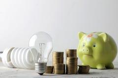 Concepto de electricidad del ahorro Guarro para el dinero, el dinero y diversas bombillas en un fondo ligero imagenes de archivo