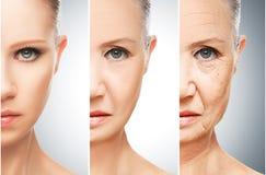 Concepto de envejecimiento y de cuidado de piel Fotografía de archivo libre de regalías