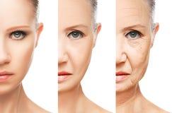 Concepto de envejecimiento y de cuidado de piel aislados Foto de archivo libre de regalías