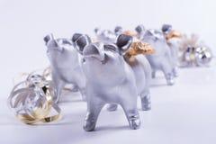 Concepto de finales de ano de la tarjeta con el cerdo, flámula en blanco Fotos de archivo