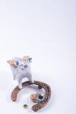 Concepto de finales de ano de la tarjeta con el cerdo, herradura en blanco Imagenes de archivo