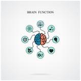 Concepto de función del cerebro para la educación y la ciencia, negocio si stock de ilustración