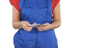 Concepto de hacer el dinero en el comercio de edificio de la construcción, mujer que cuenta el dinero en el fondo blanco foto de archivo