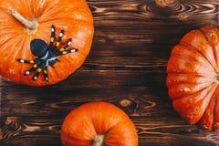 Concepto de Halloween con calabazas frescas y una araña en ella en la tabla de madera Opinión del truco o de invitación desde arr Foto de archivo libre de regalías