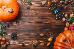 Concepto de Halloween con el primer fresco de las calabazas, de las arañas y de los insectos en la tabla Opinión del truco o de i Imagen de archivo libre de regalías