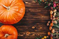 Concepto de Halloween con las calabazas y las flores frescas en la tabla de madera Opinión del truco o de invitación desde arriba Fotografía de archivo libre de regalías