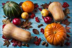 Concepto de la acción de gracias con las calabazas y las manzanas en vagos de madera azules Imagen de archivo