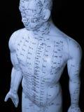 Concepto de la acupuntura Imagen de archivo